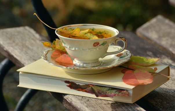 tea cup served with full tea placed on a saucer and on top of a white hard cover book